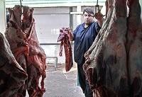 توزیع گوشت تازه گوسفندی ۳۳ هزار تومانی در تعطیلات نوروز