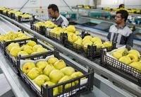 بی توجهی به برندسازی تهدیدی برای صادرات محصولات کشاورزی