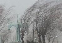 مصدومیت ۳ شهروند در اثر وزش شدید باد/ هشدار به مسافران نوروزی