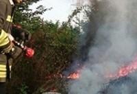 آتش تالابهای پلدختر را به آغوش کشید