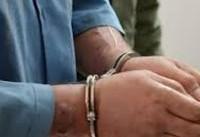 دستگیری قاتل متواری در گروه سارقین منزل