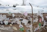 پلاستیک مخاطرات زیست محیطی گستردهای به همراه دارد