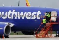 Second Southwest airlines flight forced to make emergency landing after bird strike