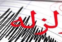 زمین لرزه نسبتا قوی بوشهر را لرزاند