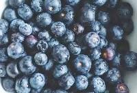 کاهش اضطراب با تغذیه | توصیههای انجمن افسردگی آمریکا