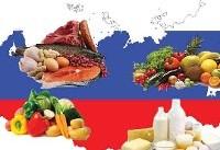 سهم اندک ایران از بازار ۳۰ میلیارد دلاری مواد غذایی روسیه