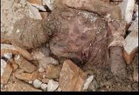 ماجرای پیدا شدن جسد رضا شاه! +عکس | همه چیز درباره مومیایی کشف شده در شهرری