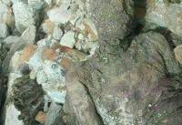 ادعای حق شناس: شنیدهام مومیایی کشف شده در شهرری را بردهاند و دفن کردهاند