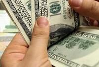 التهابات ارزی نباید بهانه ای برای افزایش قیمت ها شود