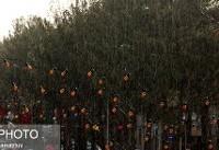 بارش باران در ۷ استان کشور