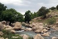 طبیعت آبشار گریت - لرستان (عکس)