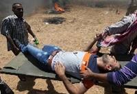 شهادت یک فلسطینی دیگر در غزه/شمار شهدای راهپیمایی بازگشت به ۱۱۶ نفر رسید