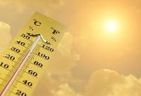 هشدار نسبت به موج گرمای شدید در مرکز و شمال هند