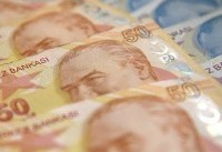 Erdogan asks Turks to help prop up plunging lira