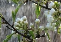 ورود سامانه بارشی جدید به کشور/ بارش باران در ۱۴ استان