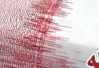 زلزله ۵ ریشتری کرمان خسارتی نداشت