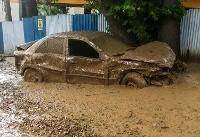 سیلاب در ۱۶ شهر و روستا /امدادرسانی به ۵۱۷