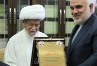 دیدار سفیر ایران در لبنان با عفیف النابلسی