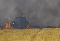 Burning kites from Gaza damage Israeli farms, wildlife