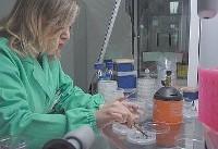 زنان پژوهشگری که سقف شیشهای دنیای کسب و کار را میشکنند