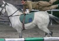 نخستین«اسبواره» انجمن نژادی اسب کرد (عکس)