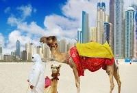گاردین: دوبی بهشت پولشویی کلاهبردارهاست