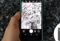 مشکل دوربین گوشیهای گوگل حل میشود