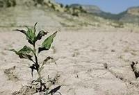 بحران آب نداریم، ورشکستگی آبی داریم