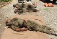 اولین تصاویر اجساد تروریستهای معدوم در درگیری رزمندگان قرارگاه نجف با تروریستها