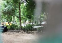توقف اجرای ۱۶ پرونده برج باغ درشمال شرق تهران