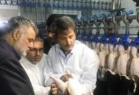 کشتارگاه تمام اتوماتیک طیور در شرق اصفهان افتتاح شد