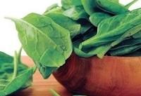 بشناسید گیاهان حاوی آهن را