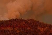 2 more firefighters hurt battling blaze near Yosemite
