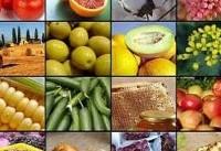 تغییرات ۳ ماهه قیمت محصولات کشاورزی/ نخود ۲۰ درصد و عدس ۴ درصد گران شد