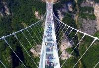 افتتاح طولانی ترین پل شیشه ای در شمال شرق چین