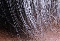 نکته بهداشتی: موهای سالمتر