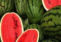 سالی یك سد كرج هندوانه صادر می&#۸۲۰۴;كنیم!