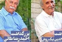 اعلام بزرگداشتهای دهمین جشن سینمای مستند ایران