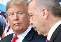 Erdogan vows Turkey will not be cowed by US