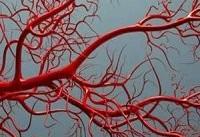 رشد رگ های خونی با نانو ذرات رُس