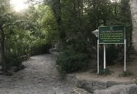 ورود ساز به پارکها آزاد شد
