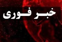 اشرف غنی آتشبس مشروط سه ماهه با طالبان اعلام کرد