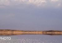 پیش رویداد استارتاپ ویکند دریاچه ارومیه در تبریز برگزار شد