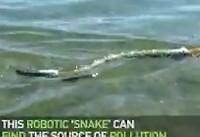 تشخیص منبع آلودگی در آب با کمک ربات ماری! +فیلم