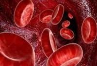 پلاکت های خون را با ۷ گام سالم افزایش دهید
