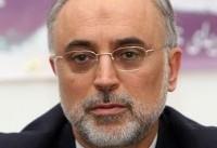 صالحی: ایران به دنبال استفاده از رآکتورهای اتمی کوچک و متوسط است