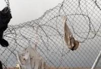 توصیه ترامپ به اسپانیا: در امتداد صحرا دیوار بکشید