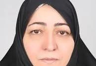 نماینده مجلس: کاش اندازه حجاب، به تلفات جاده ای توجه می شد