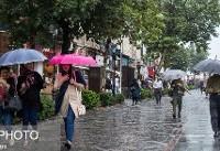 باران در نوار شمالی کشور/ وضعیت هوای تهران در اول مهر