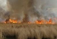 آتش سوزی در هورالعظیم مهار شد